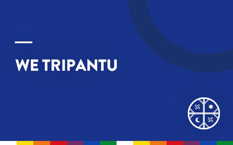 web_pueblos-originarios_wetripantu02